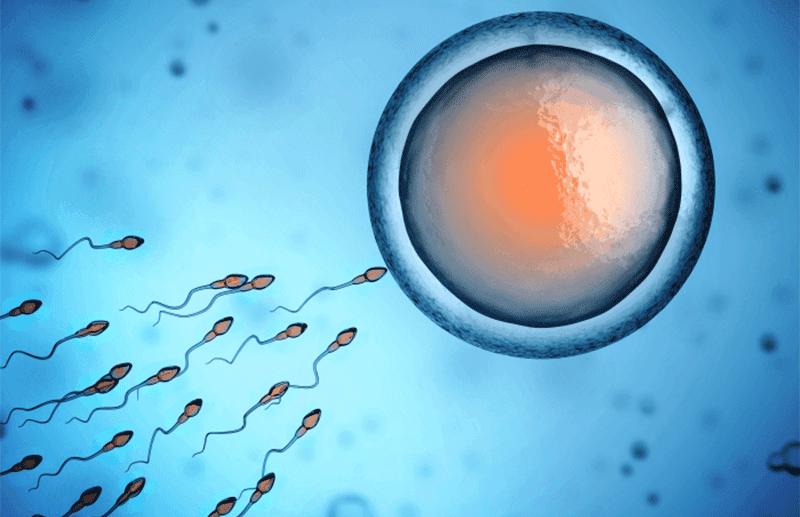 Procreazione Medicalmente Assistita: in Italia in 10 anni, 100mila nati